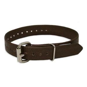 buckingham-2639-single-piece-climber-strap